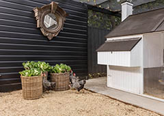landscaped chicken run treat baskets