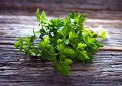 bundle of parsley sprigs and leaves