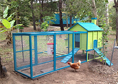Colourful penthouse chicken coop with run