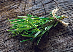 Bundle of rosemary sprigs