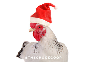 3 Holiday Gifts for Chooks and Chicken Keepers