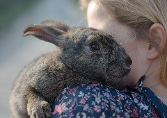 Woman holding a pet rabbit