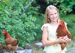 Young girl holding isa brown chicken in backyard