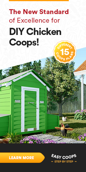 diy chicken coop plans to download now