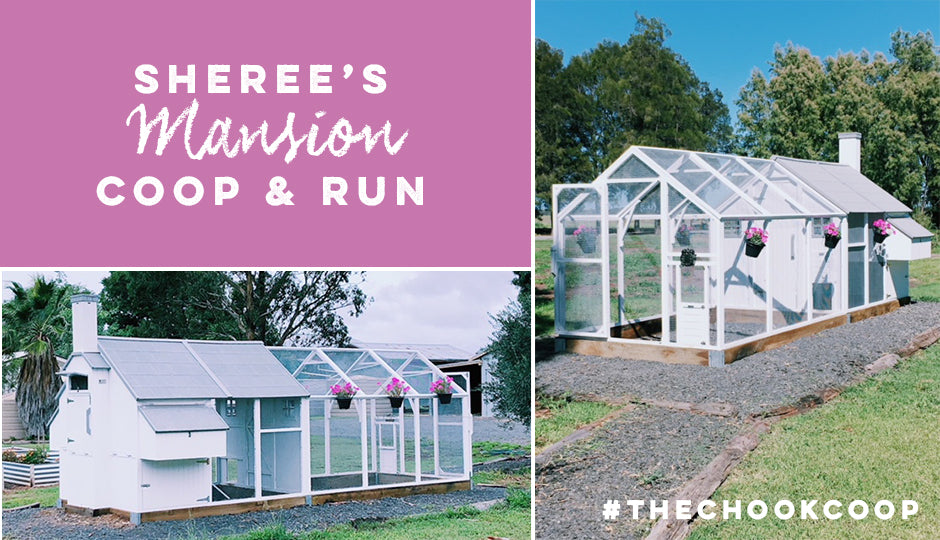 mansion coop and chicken run package
