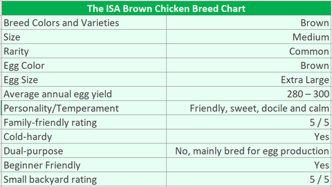 Isa-Brown-Chicken-Breed-Chart