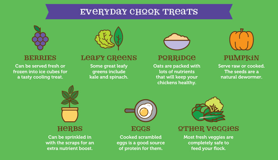 What Do Chickens Eat - Everyday chook treats