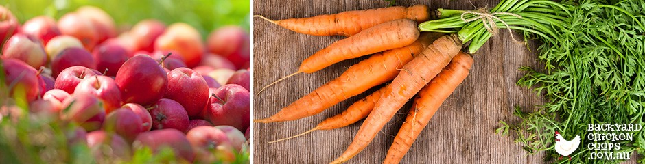 apple-and-carrot-juice-builds-immunity