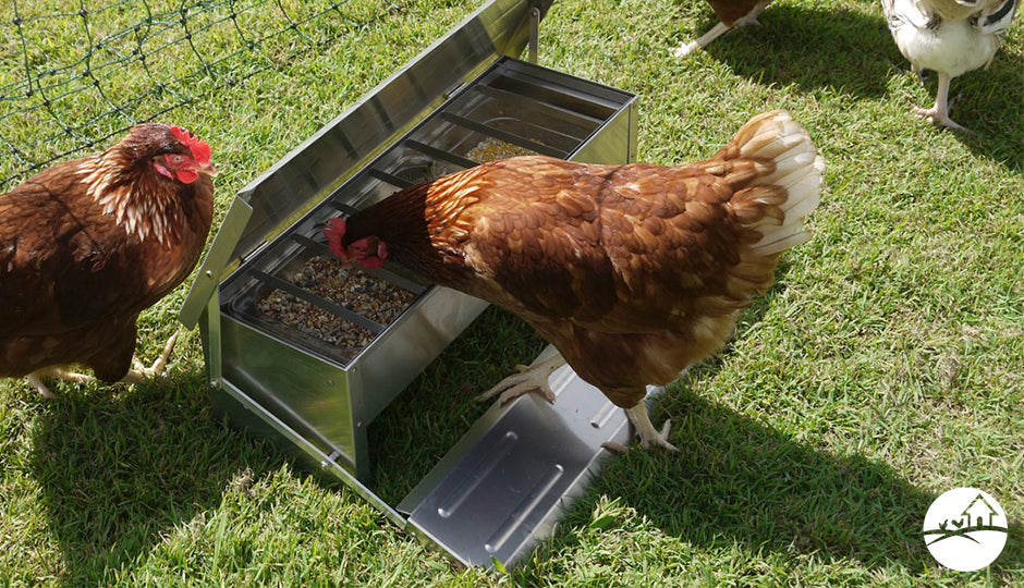 automatic treadle chicken feeders