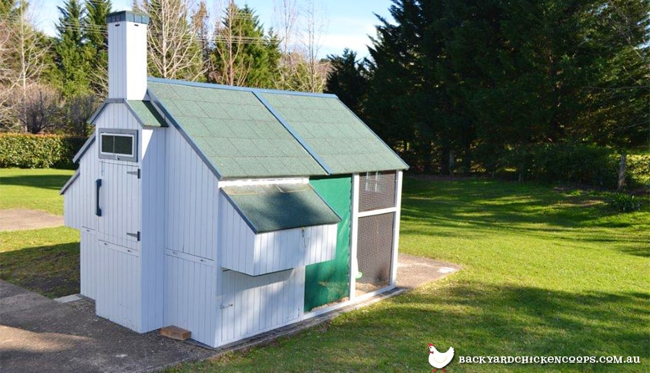 backyard-chicken-coops-should-have-solid-ground