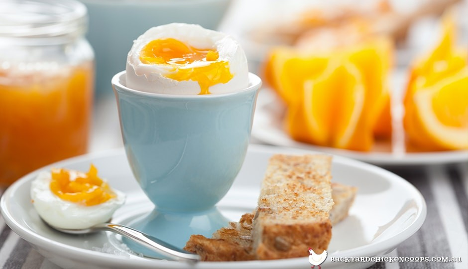 boiled eggs are a delicious and healthy breakfast