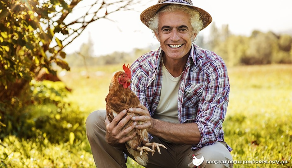 chicken-farmer-holding-chicken