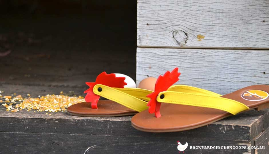 Chicken lady thongs shoes