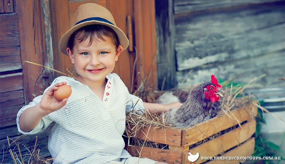 children-can-become-valuable-backyard-chicken-keepers