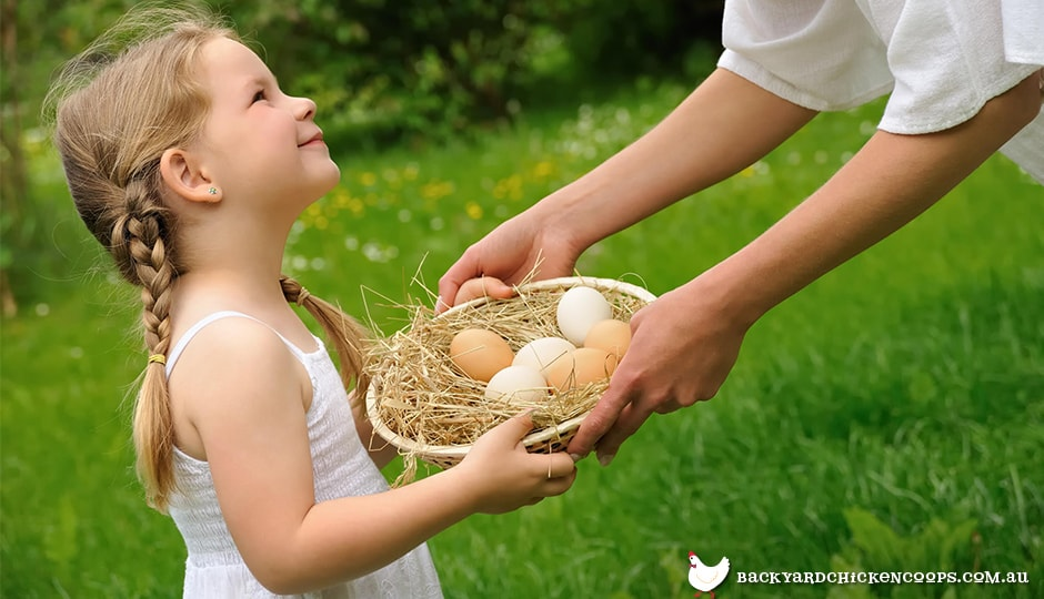 collecting-eggs-is-a-delightful-chore-for-children