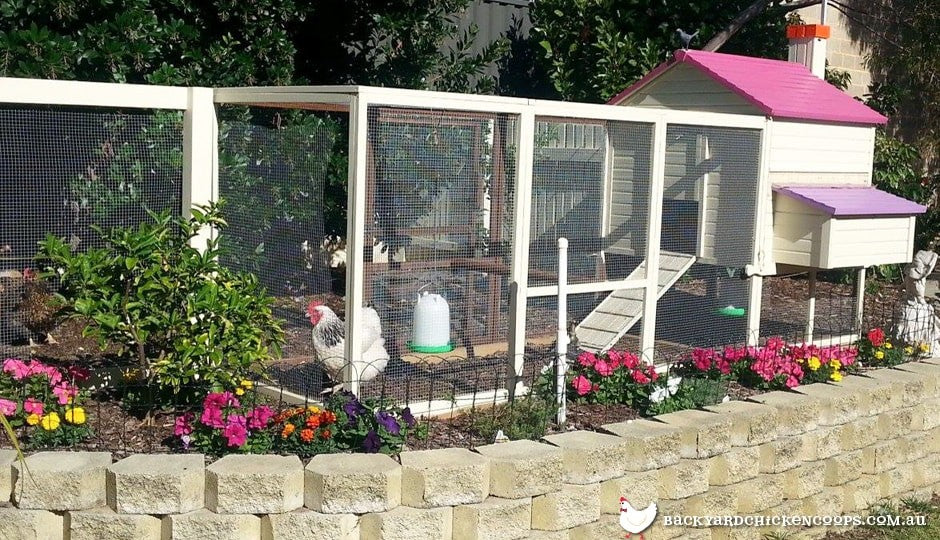 colourful-penthouse-backyard-chicken-coop-in-flower-garden