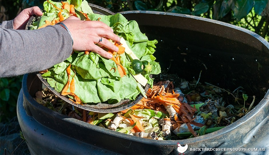 composting is an easy way to reuse food scraps and live a more sustainable lifestyle