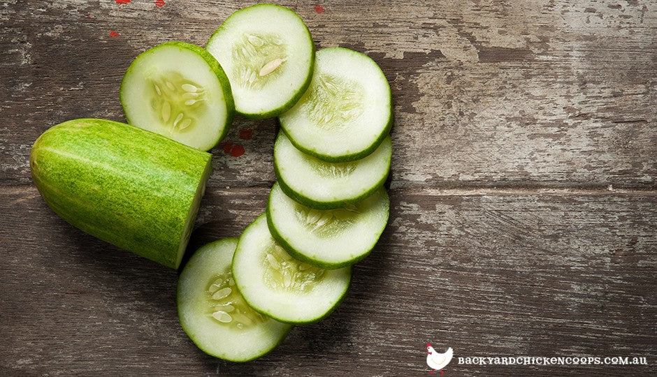 sliced cucumber on table