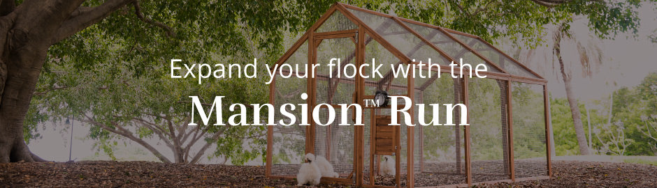 expand your flock with the mansion run