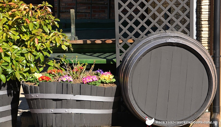 wine barrels make for great flower beds