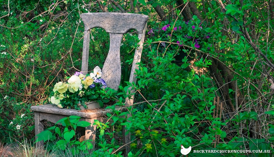 weathered old chairs make a great resting spot for flower pots