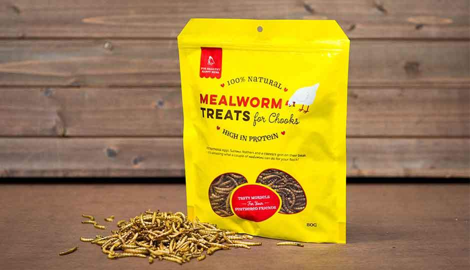 healthy mealworm treats for chickens