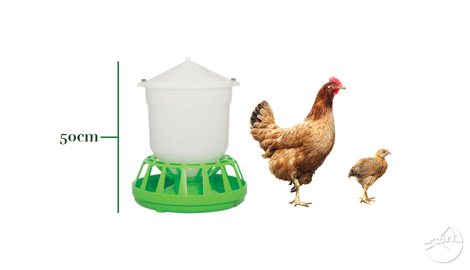 hopper chicken feeders