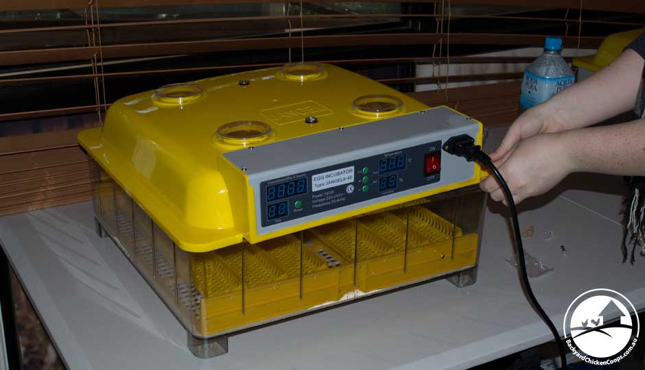 reduce the humidity in your incubator by opening the lid to let moisture out