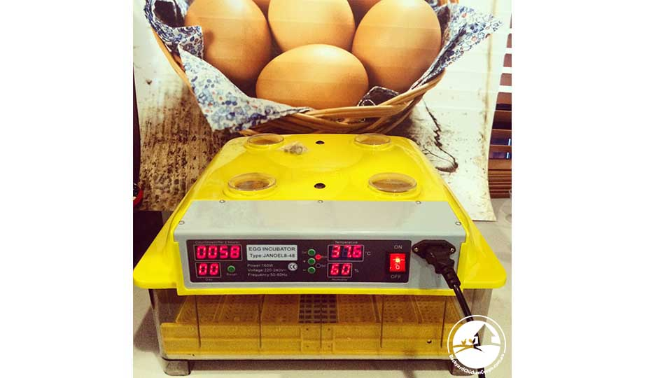 a good incubator measures temperature and humidity