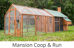 mansion chicken coop and run