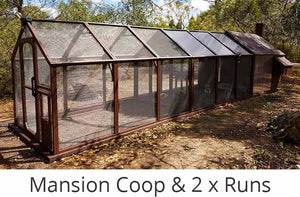 mansion chicken coop with two runs