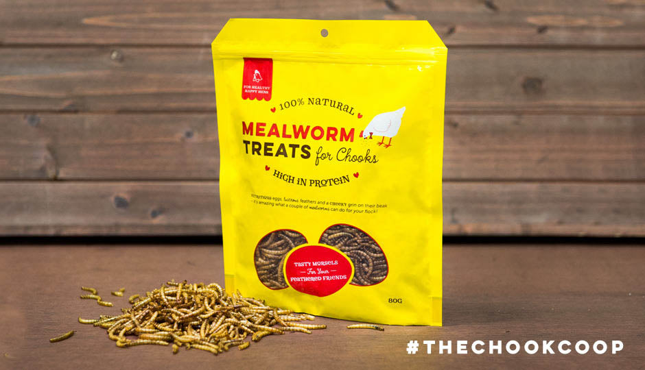 mothers day gift idea mealworms