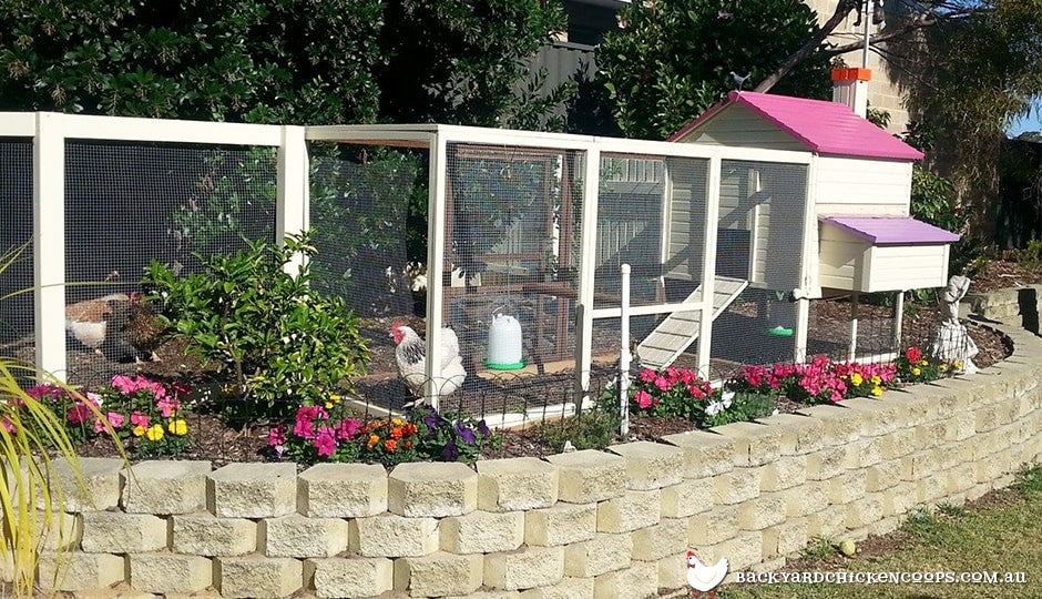 backyard chicken coops look can be painted to match your home or garden
