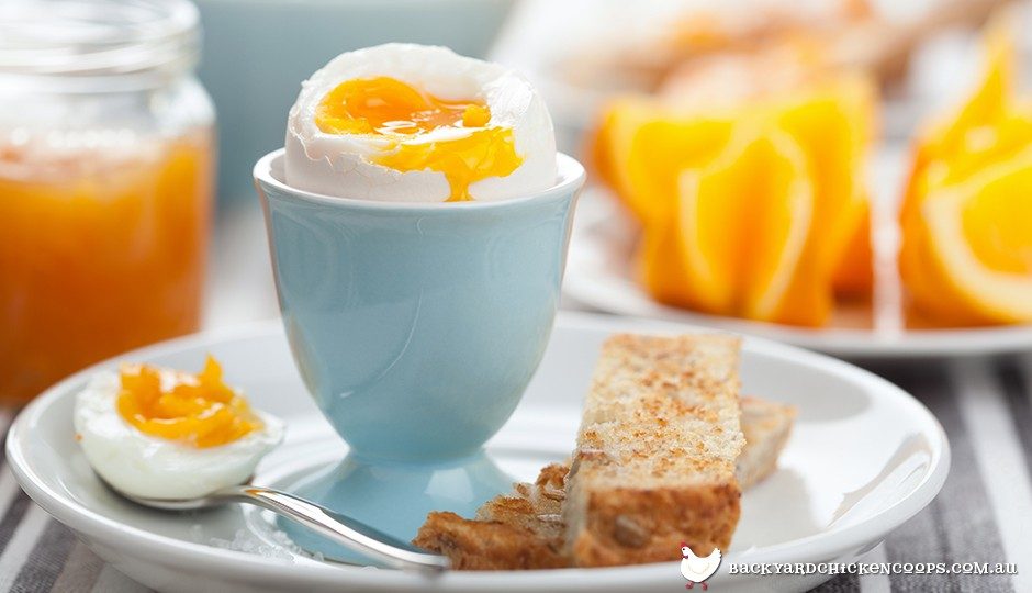 Perfectly boiled eggs are a delicious, nutritious breakfast