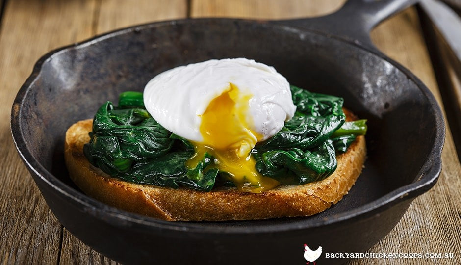 poached-eggs-over-spinach