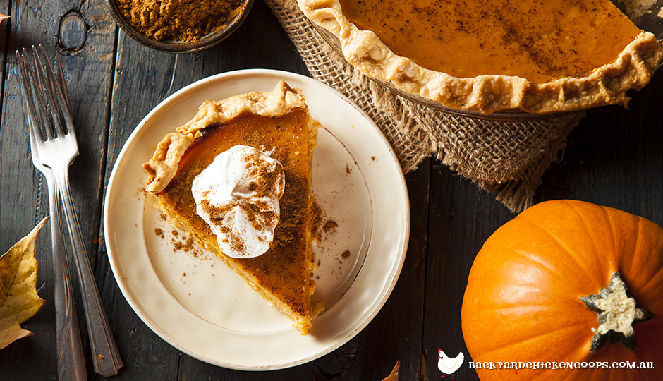 Pumkin pie on timber table