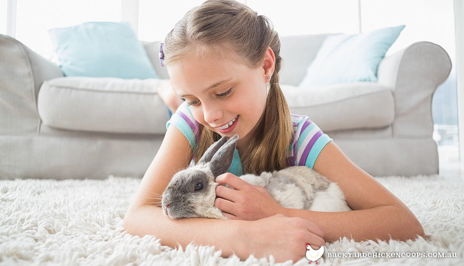 children will love playing with their fluffy bunny rabbit friend