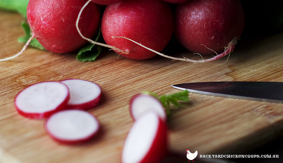 Radishes cut on timber board