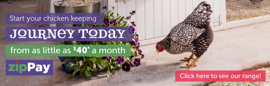 interest free finance available on chicken coops