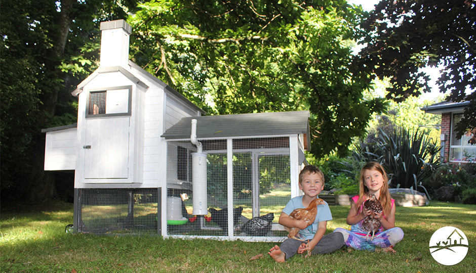 taj mahal chicken coop kids gift idea backyard