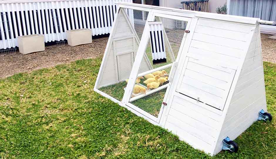 small chicken coop cluck house for baby chickens or bantam