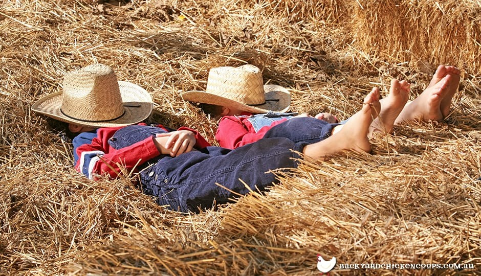 two-boys-napping-in-hay-stack