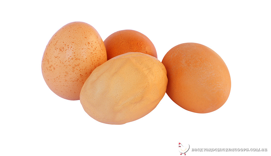 some weird chicken eggs: pimpled, wrinkled, discoloured, and soft