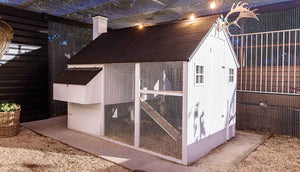 white painted mansion chicken coop with black roof
