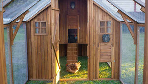 mansion chicken coop with automatic door opener attached