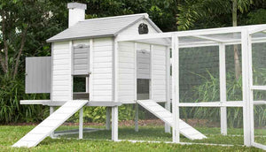 penthouse chicken coop with automatic door opener