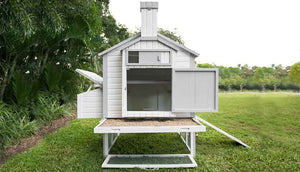 back view outdoor chicken coop with open door