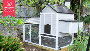 grey and white chicken coop with foundation sleepers
