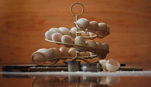 egg skelter side view