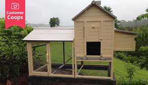 outdoor cream painted taj mahal chicken coop